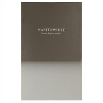 ヴィジョンステイト「マスターホワイト」の商品画像