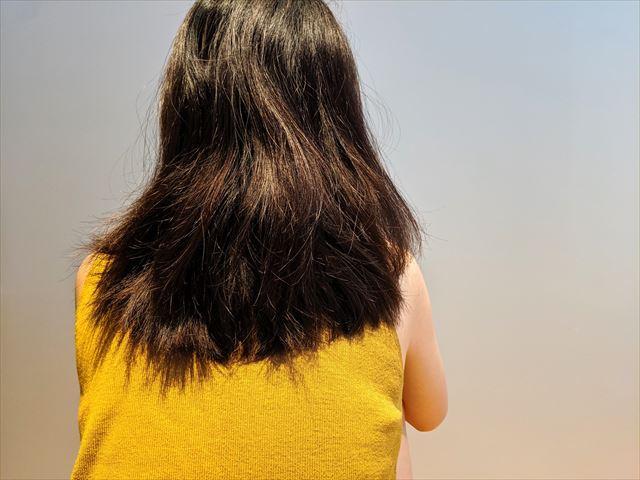 ボサボサに傷んだ髪の毛の画像1