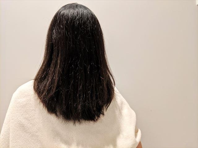 トリートメント後にブローした髪の画像